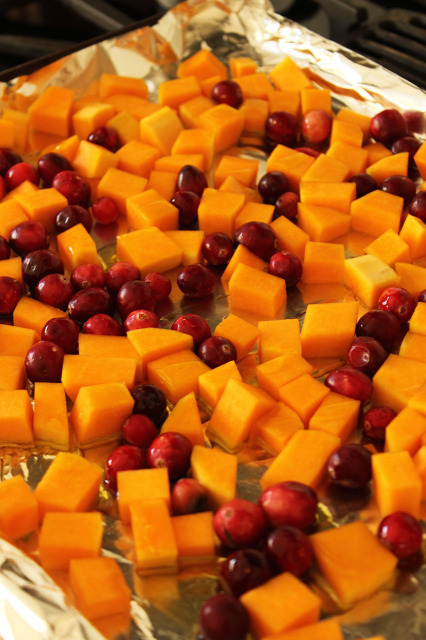 Butternut Squash Cranberry and Burrata Salad | The Suburban Soapbox