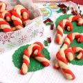 Candy Cane Shortbread 9