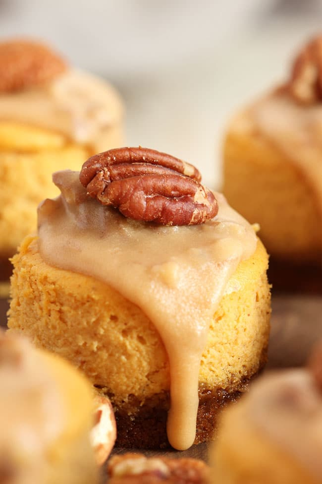 Mini Bourbon Pumpkin Praline Cheesecakes | The Suburban Soapbox