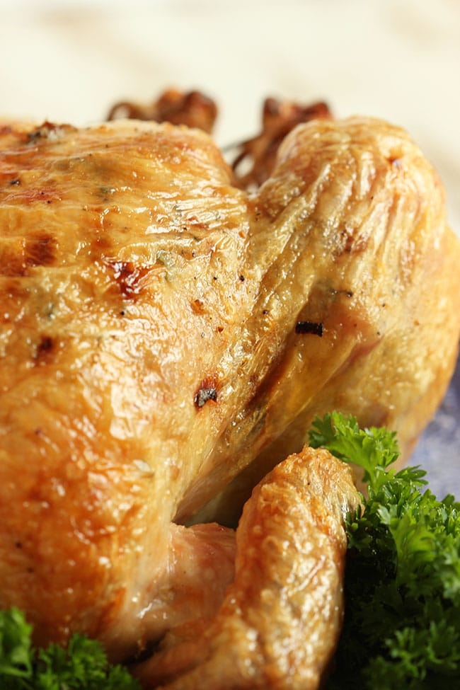 Simple Roast Chicken | The Suburban Soapbox #ALDI #BacktoSchool