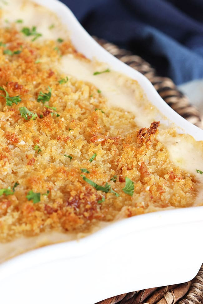 Five Cheese Macaroni and Cheese with Panko Crust | The Suburban Soapbox