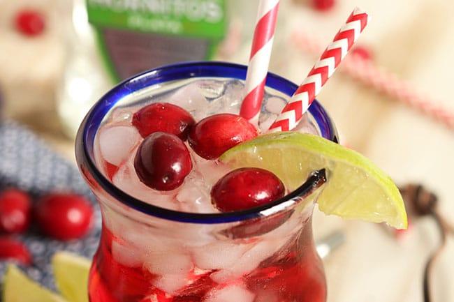 Sparkling Cranberry Paloma | The Suburban Soapbox