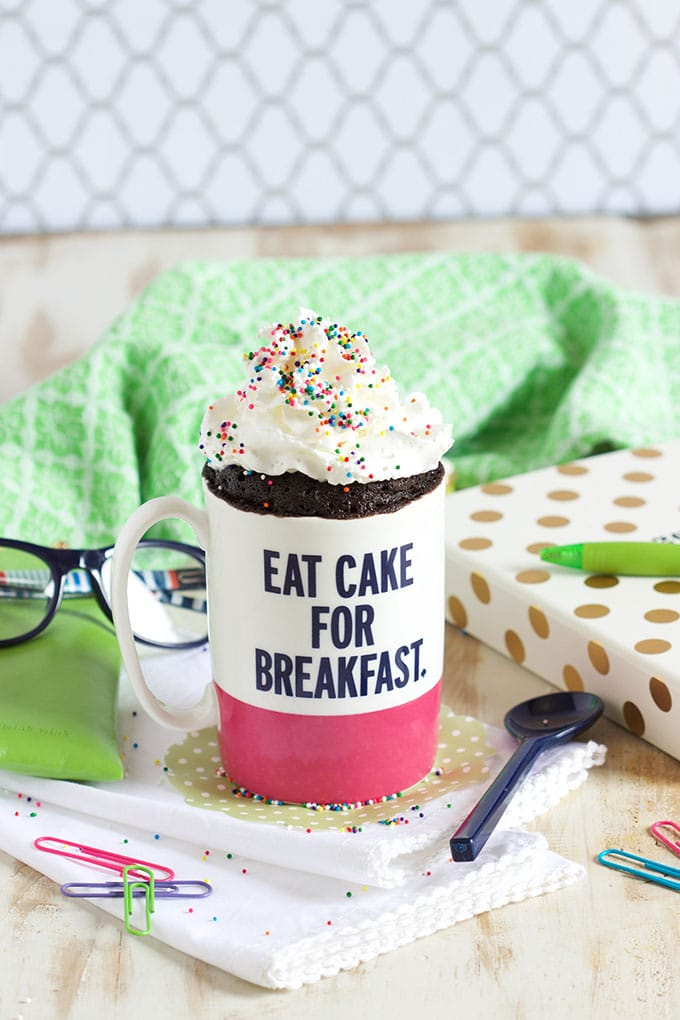 The Very Best Chocolate Mug Cake Recipe | TheSuburbanSoapbox.com