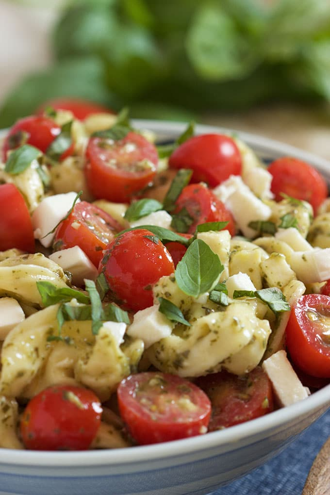 Close up of caprese tortellini salad with basil leaves on top. | TheSuburbanSoapbox.com