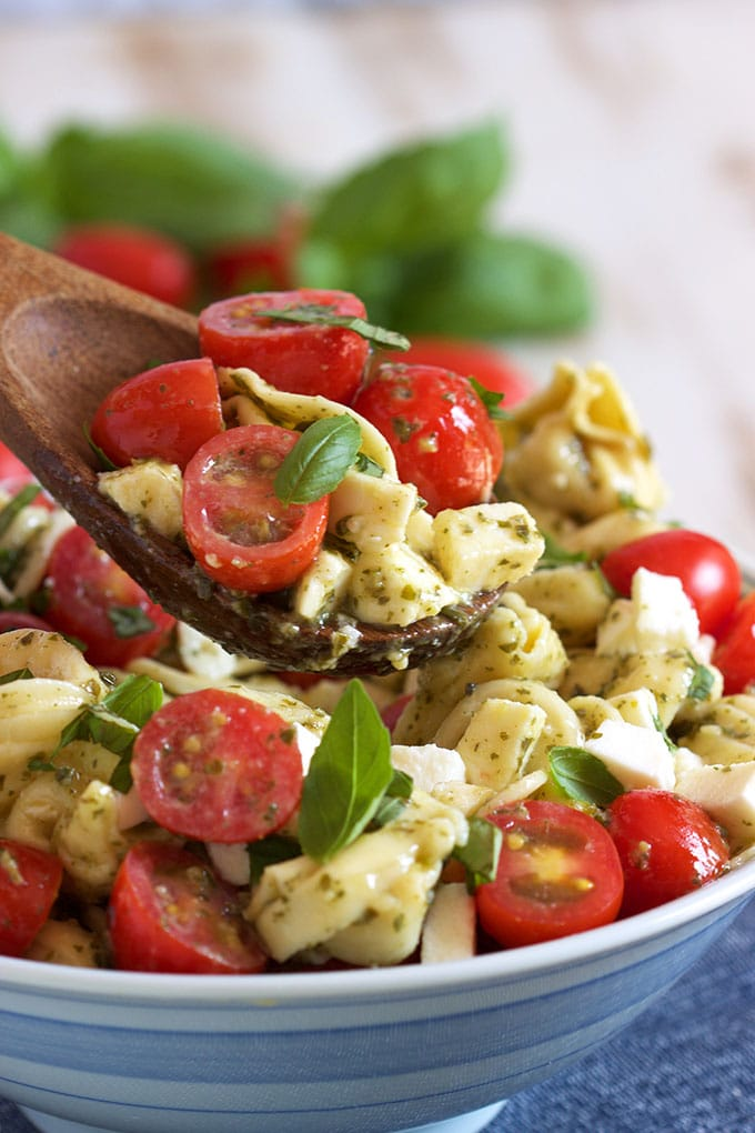 Easy Caprese Tortellini Salad on a wooden spoon. | TheSuburbanSoapbox.com