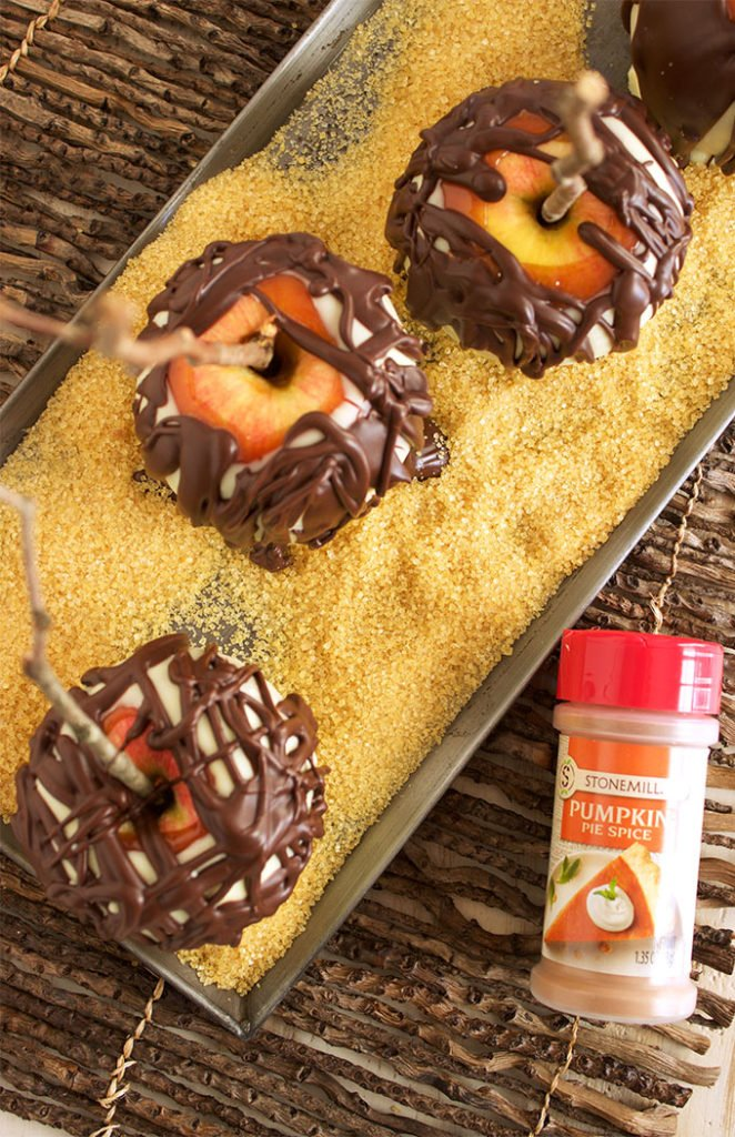 A fun fall treat for the holidays, Chocolate Covered Pumpkin Spice Caramel Apples are easy to make and festive. TheSuburbanSoapbox.com